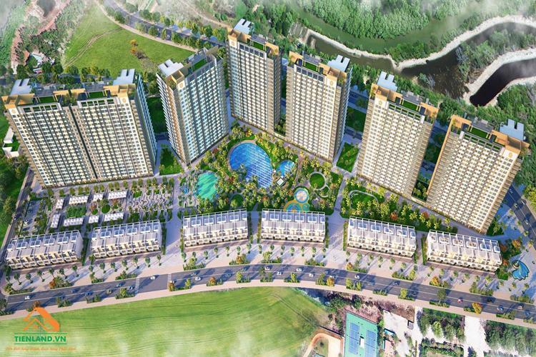Tiềm năng phát triển của dự án Hồ Tràm Complex